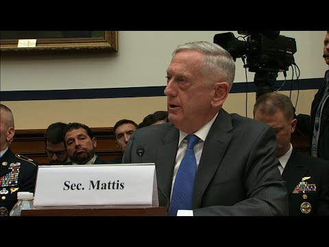 Mattis: US Aim in Syria is Still Defeating ISIS