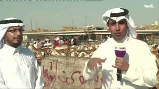 كم عدد خرفان الحج في مكة؟