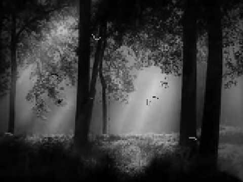 Pădure, dragă pădure / Dear forest