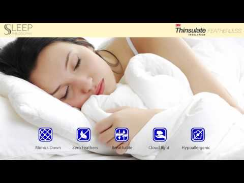Kasidy Thinsulate Comforter Mini Set by Sleep Philosophy