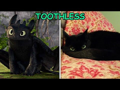 How To Train Your Dragon In REAL LIFE!