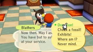 365 Days of Animal Crossing City Folk, Day 349 ORGANIZE!