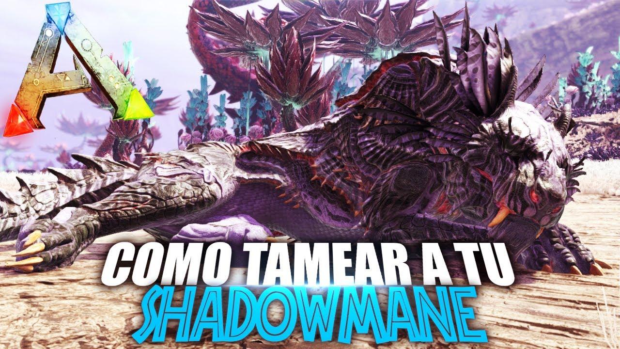 Download COMO TAMEAR A TU SHADOWMANE | Guia Español | Ark: Survival Evolved