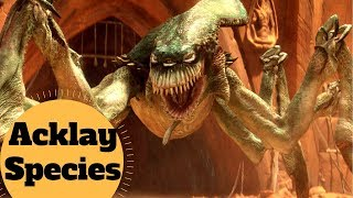 Geonosian Arena Monster! - ACKLAY Species Lore - Star Wars Species & Creatures Explained