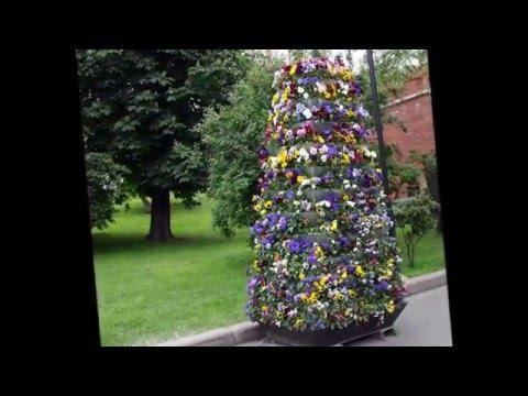 Идеи для сада и дачи  Ветикальные клумбы своими руками