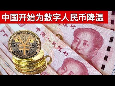 中国开始为数字人民币降温/强制统一必修课 国际学校大撤退/王剑每日观察/20210420