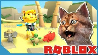 HOW TO USE MORE PETS | ROBLOX BEACH SIMULATOR