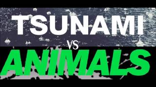 Martin Garrix Animals Vs. DVBBS Tsunami