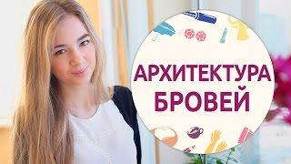 Архитектура бровей [Шпильки Женский журнал]