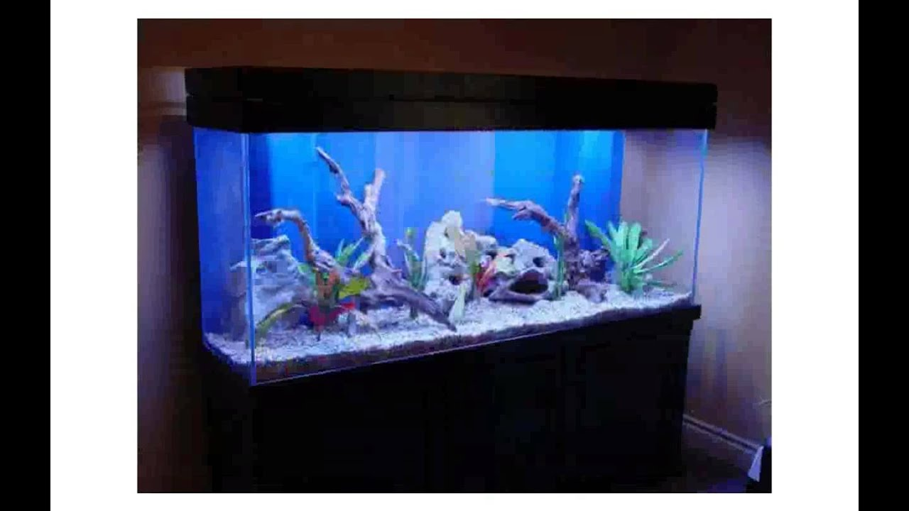 Aquarium decorations large youtube for Aquarium decoration ideas cheap