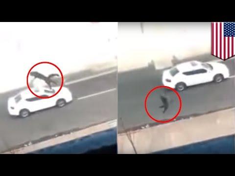 Animal cruelty: New Jersey teen throws cat from third-floor balcony, feline survives - TomoNews