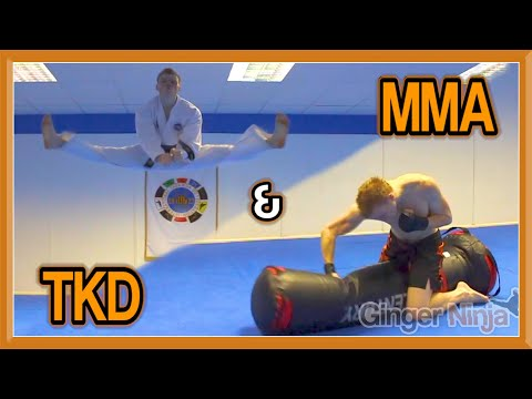 Taekwondo & MMA Sampler on the Versys VS.1