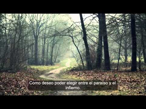 Tears and Rain - James Blunt (Letra Poema en Español)