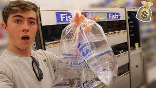 Rescuing SICK Fish From WALMART!!! (Ft. Paul Cuffaro)