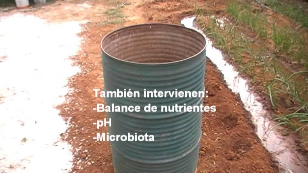 Como hacer compost casero youtube - Como hacer compost en casa ...
