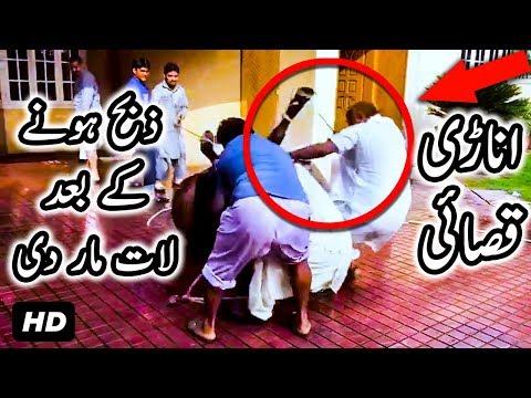 Bull Kicks Anari Qasai on his HEAD After Qurbani at Eid ul Adha 2017 Bakra Eid 2017 Punjab Pakistan
