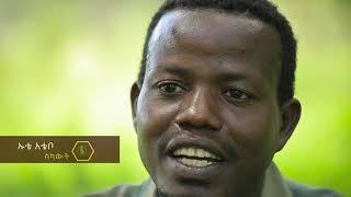 ከዝኆን ጋር የሚኖረው ኢትዮጵያዊ የተፈጥሮ ጀግና #Travel Ethiopia-Ethiopian wildlife hero