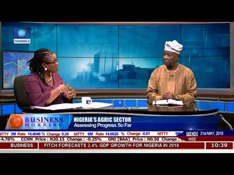 Analysing Nigeria's Agricultural Sector Pt.1 |Business Morning|