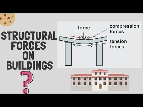 Tension and Compression Forces in Buildings.