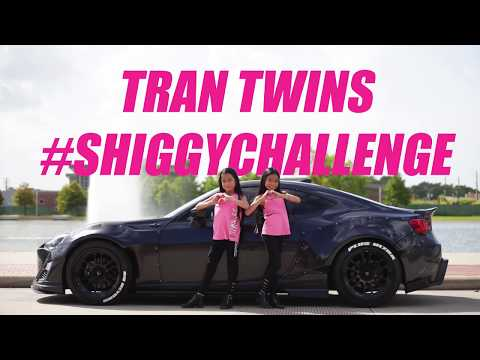 KIKI DO YOU LOVE ME CHALLENGE - DRAKE IN MY FEELINGS | Tran Twins