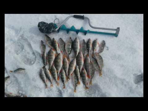 Рыбалка в омской области на блесну