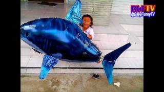 balon mainan anak   qyla suka bermain air swimmer shark   balon gas swimmer hiu