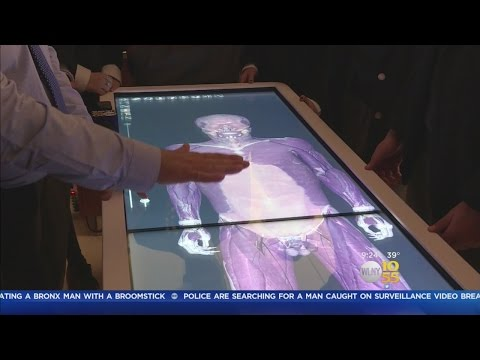 Virtual Cadavers Offer A Cutting Edge Look At The Body