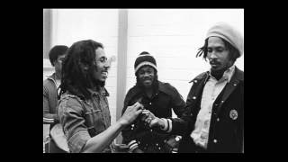Bob Marley - Bass is Heavy