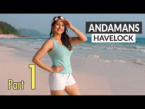 andaman-nicobar-part-1---havelock-island-|-places-to-visit---scuba-diving---hotels---nightlife