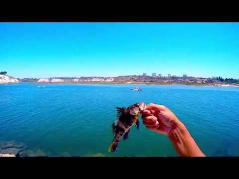 Upper Newport Bay Fishing