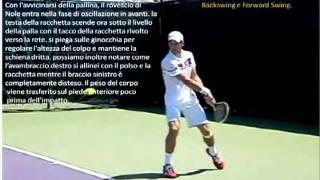 Novak Djokovic two handed backhand analisys