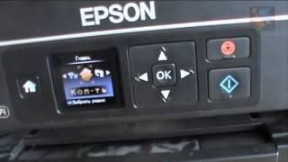 Сброс памперса на принтере Epson XP-313 прошивкой. Ошибка E-10