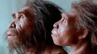 """Урок №2 """"Происхождение человека. Особенности вида Homo sapiens"""""""