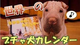 【購入はこちらから!!!】 https://pookieskuroda.stores.jp もやちゃ...