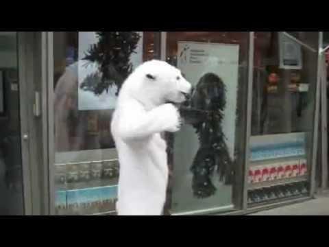 LONDON: Polar Bear Insurance- SOVAG Berlin I National Penghu University Apple Daily court