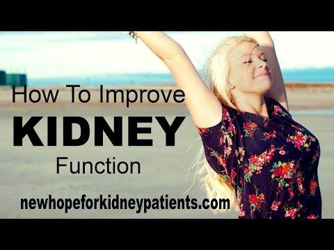 How to Improve Kidney Function in Kidney Disease Patients
