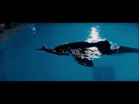 03. The Gifts (part 1/2) (Free Willy / 1993) Soundtrack