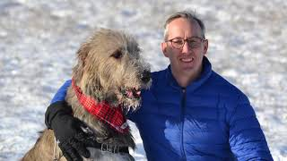 Tully Our Irish Wolfhound - He Blessed Our Life