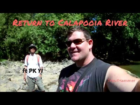 Return to Calapooia River - ft PK Yi