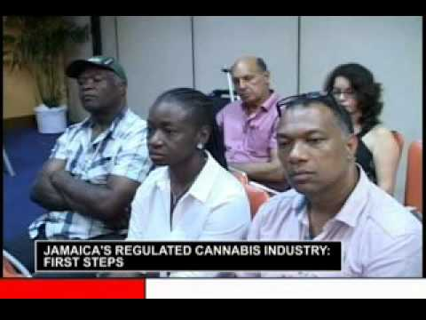 Jamaica's Regulated Cannabis Industry Conference highlight