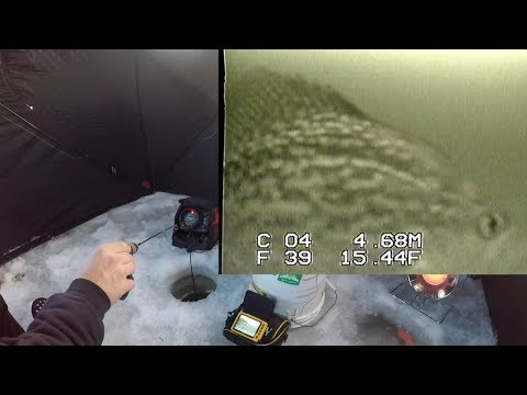 ICE FISHING with UNDERWATER CAMERA - Crappies, Pike, Perch & Gills!
