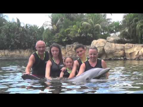 Discovery Cove Orlando Florida 2014