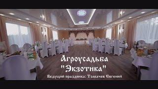 """Агроусадьба """"Экзотика"""" Бобруйск. Свадьба."""