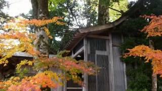 日本で最も美しい村 小代(おじろ)の秋 Ojiro Valley in Autumn