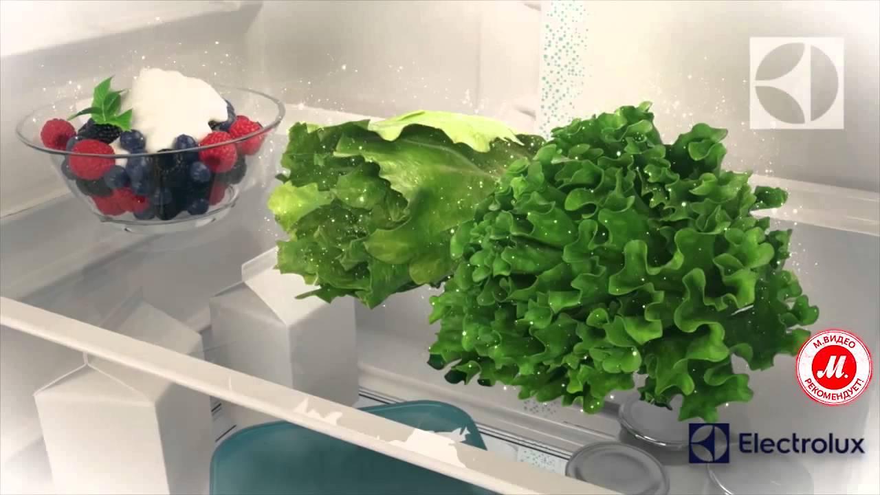 Встраиваемый морозильник electrolux eun 1100 fow: в наличии, гарантия 1 год. Холодильник. Ру — отзывы (1) — характеристики — описание — фото.