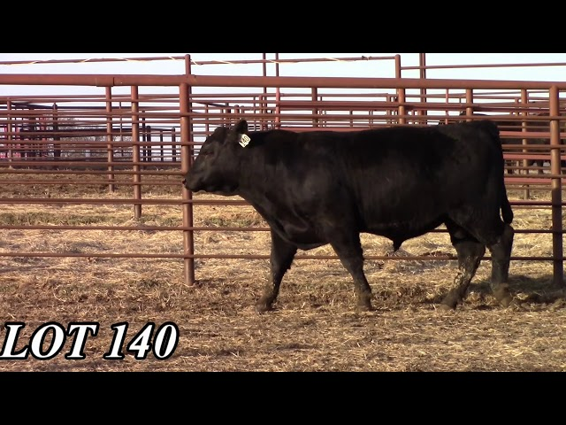Mead Angus Farms Lot 140