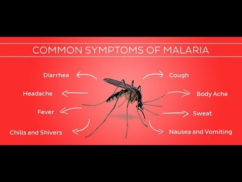 World Malaria day: effects & control of chronic malaria