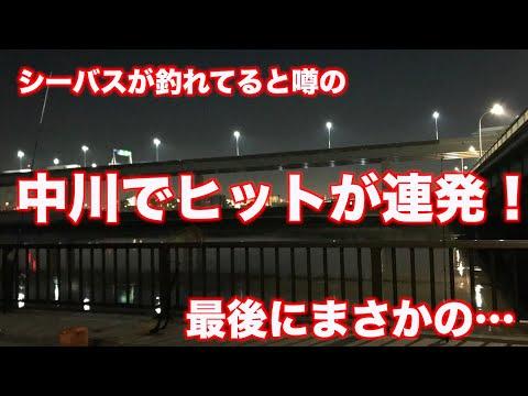 【中川・荒川で釣り】ヒット連発!この時期シーバスを狙うなら河口がアツイ!《2019年11月12日》