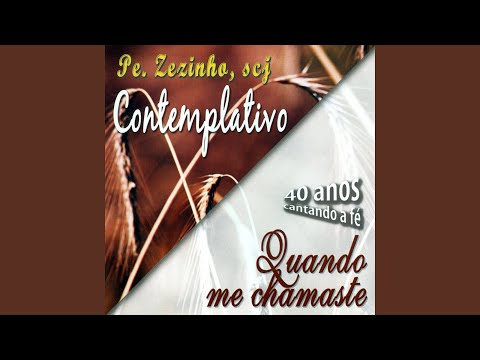 PADRE ZEZINHO QUIETUDE BAIXAR CD