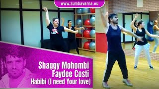 ZUMBA - Shaggy Mohombi Faydee Costi - Habibi (I need Your love) - ZUMBA® Fitness with Miro